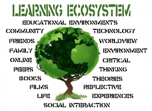 Steps To Creating Learning Ecosytem